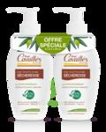 Acheter Rogé Cavaillès Hygiène intime Soin naturel Toilette Intime Sécheresse 2x250 ml à VIC-FEZENSAC