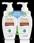 Acheter Rogé Cavaillès Hygiène intime Soin naturel Toilette Intime Anti-bactérien 2x250 ml à VIC-FEZENSAC