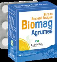Lehning Biomag Comprimés à Croquer Agrumes B/90 à VIC-FEZENSAC