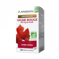 Acheter Arkogélules Vigne Rouge Bio Gélules Fl/45 à VIC-FEZENSAC