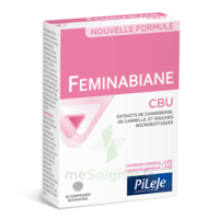 Pileje Feminabiane Cbu 30 Comprimés Bicouches à VIC-FEZENSAC