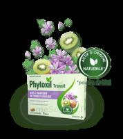 Phytoxil Transit Comprimés B/20 à VIC-FEZENSAC