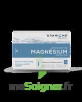 Granions De Magnesium 3,82 Mg/2 Ml S Buv 30amp/2ml à VIC-FEZENSAC