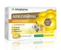 Arkoroyal Propolis Pastilles Adoucissante Gorge Guimauve Miel Citron B/24 à VIC-FEZENSAC