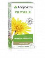 Arkogélules Piloselle Gélules Fl/45 à VIC-FEZENSAC