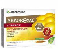 Arkoroyal Dynergie Ginseng Gelée Royale Propolis Solution Buvable 20 Ampoules/10ml à VIC-FEZENSAC