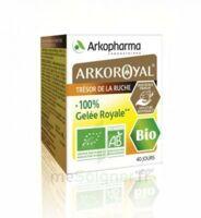 Arkoroyal 100% Gelée Royale Bio Gelée Pot/40g à VIC-FEZENSAC