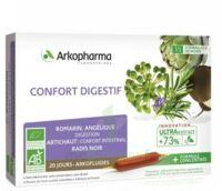 Arkofluide Bio Ultraextract Solution Buvable Confort Digestif 20 Ampoules/10ml à VIC-FEZENSAC