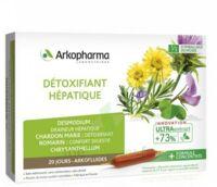 Acheter Arkofluide Bio Ultraextract Solution buvable détoxifiant hépatique 20 Ampoules/10ml à VIC-FEZENSAC