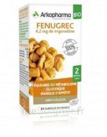 Arkogélules Fenugrec Bio Gélules Fl/40 à VIC-FEZENSAC