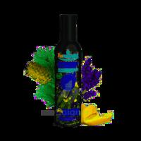 Puressentiel Diffusion Parfum D'ambiance – Douceur De Provence – 90 Ml à VIC-FEZENSAC