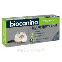 Biocanina Multivermyx Comprimés Vermifuge Chat B/2 à VIC-FEZENSAC