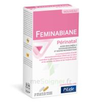 Pileje Feminabiane Périnatal 28 Gélules Blanches Et 28 Gélules Jaunes à VIC-FEZENSAC