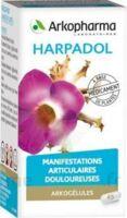 Arkogelules Harpagophyton Gélules Fl/150 à VIC-FEZENSAC