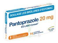 Pantoprazole Eg Labo Conseil 20 Mg Cpr Gastro-rés Plq/14 à VIC-FEZENSAC