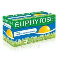 Euphytose Comprimés Enrobés B/120 à VIC-FEZENSAC