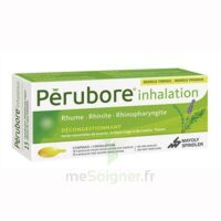 Perubore Caps Inhalation Par Vapeur Inhalation Plq/15 à VIC-FEZENSAC