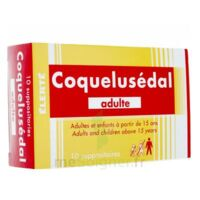 Coquelusedal Adultes, Suppositoire à VIC-FEZENSAC