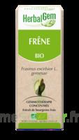 Herbalgem Frêne Macérat Bio 30ml à VIC-FEZENSAC