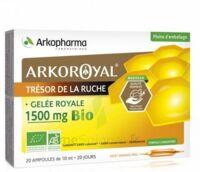 Arkoroyal Gelée Royale Bio 1500 Mg Solution Buvable 20 Ampoules/10ml à VIC-FEZENSAC