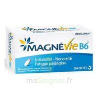 Magnevie B6 100 Mg/10 Mg Comprimés Pelliculés Plaq/60 à VIC-FEZENSAC