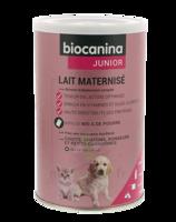 Biocanina Lait Poudre Maternisé B/400g à VIC-FEZENSAC