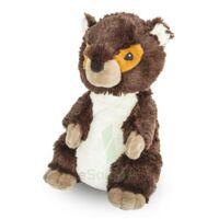 Soframar Bouillotte Marmotte à VIC-FEZENSAC