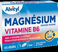 Govital Magnésium Vitamine B6 Comprimés B/45 à VIC-FEZENSAC