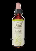 Fleurs De Bach® Original Olive - 20 Ml à VIC-FEZENSAC