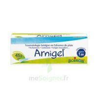 Boiron Arnigel Gel T(alumino-plastique)/45g à VIC-FEZENSAC