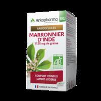 Acheter Arkogélules Marronnier d'Inde Bio Gélules Fl/45 à VIC-FEZENSAC