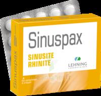 Lehning Sinuspax Comprimés à Croquer 3plq/20 à VIC-FEZENSAC