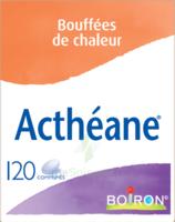 Boiron Acthéane Comprimés B/120 à VIC-FEZENSAC